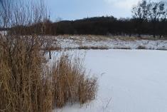 Poldr, zima 2020-2021