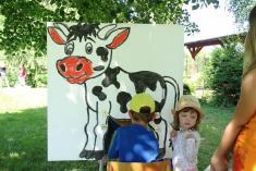 Kterak podojit krávu
