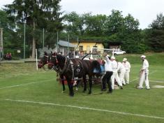 Vypřáhnout koně